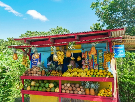 a-colorful-fruit-stall-in-jamaica-selling-ice-cold-coconut-jelly